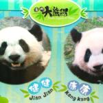 【閲覧注意】マカオでパンダに会いたかった!! ~石排湾郊野公園の「澳門大熊猫館」~