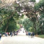 日本屈指のパワースポット〈明治神宮〉に35年ぶりの訪問~御朱印開運紀行⑯~
